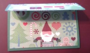 .2012 Christmas Chris