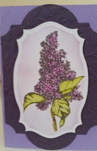 Flourishes Lilac