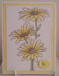 Paper Roses Stitched Rectangles Nested Labels 2 Daisy Bouquet